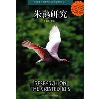 朱�q研究/中国重点保护野生动物