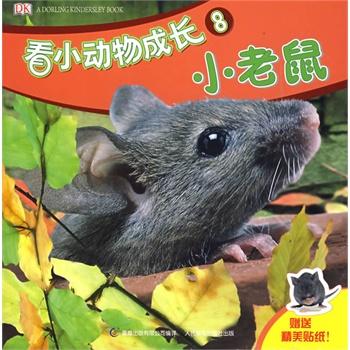 看小动物成长8:小老鼠