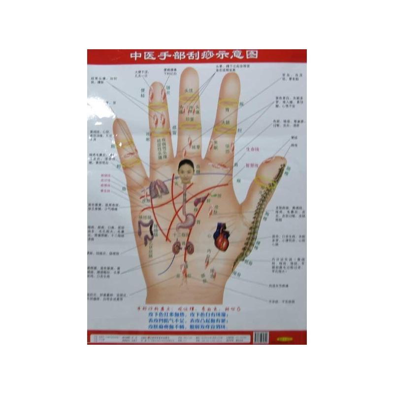 《中医手部刮痧示意图》