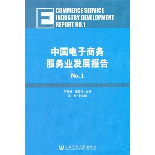中国电子商务服务业发展报告No.1