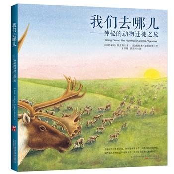 秘的动物迁徙之旅