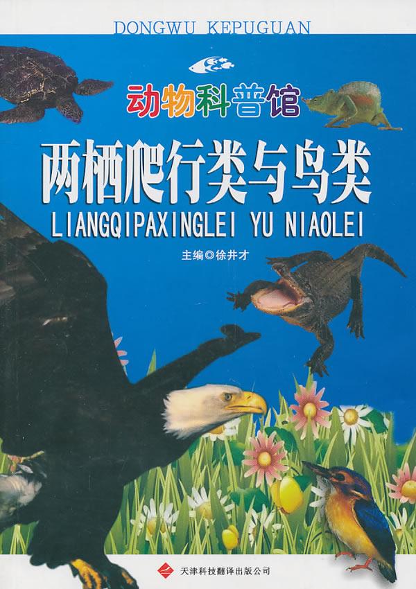 动物科普馆系列——两栖爬行类与鸟类