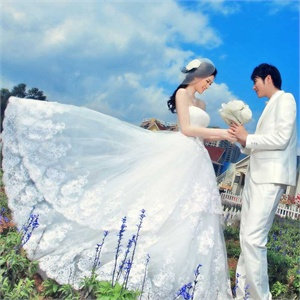 名门新娘婚纱礼服 新款 韩版蓬蓬公主婚纱 冬季抹胸婚纱 818