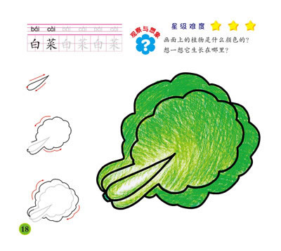 蒙纸一笔画 水果蔬菜篇