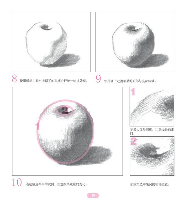 火龙果   白萝卜