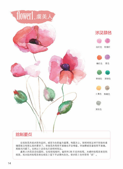 【北京发货】 水彩花卉写真:15种花草的细致彩绘
