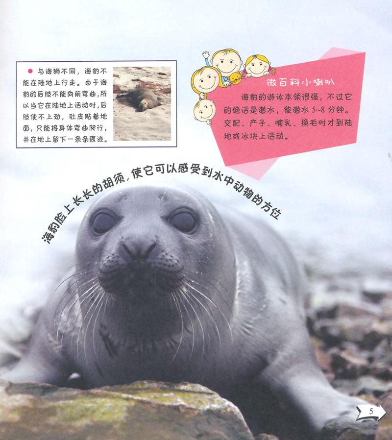 真有意思的微百科--可爱的哺乳动物