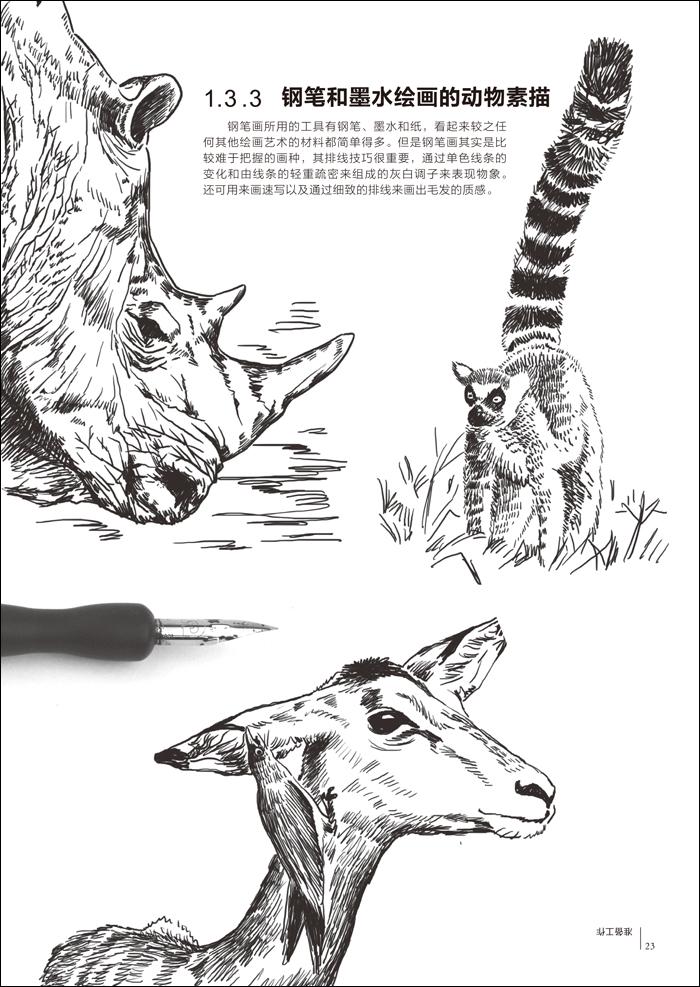 前 言 准备工作pter 1 1.1 描绘动物素描的材料8 1.1.1 铅笔 炭笔 木炭条8 1.1.2 纸张10 1.1.3 橡皮11 1.1.4 其他工具12 1.2 不同效果的呈现方式14 1.2.1 不同的握笔姿势可以画出不同的毛发14 1.2.2 画动物素描的各种线条15 1.2.3 同一种动物在不同纸张上画出的效果17 1.2.4 不同型号的铅笔画出的不同动物18 1.