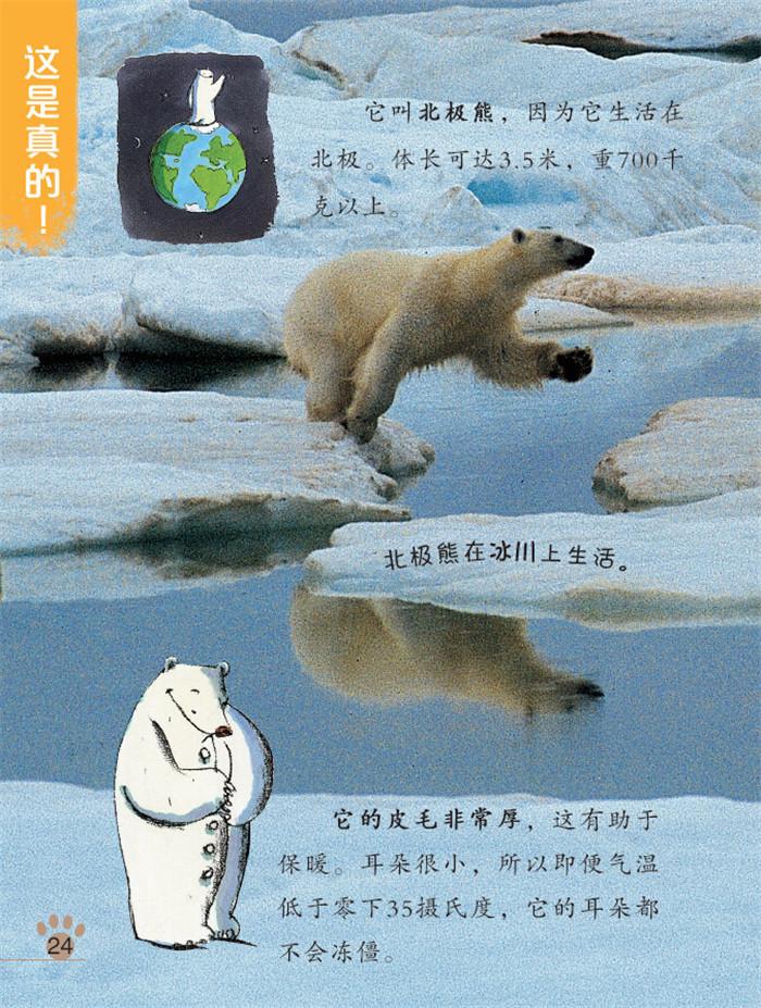 脑洞大开(第2辑):小熊波罗不想睡觉