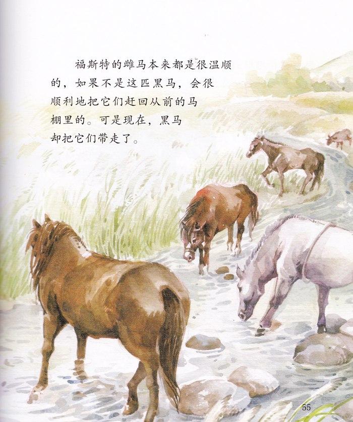 《西顿动物故事(低幼版)-3-狼王洛波》(欧·汤·西顿
