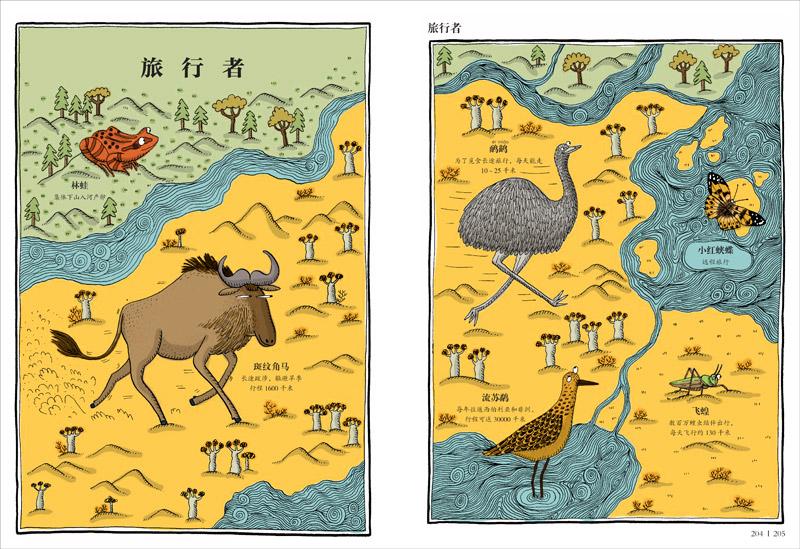 推荐一:你绝对没见过的动物分类图鉴   你绝对没见过的分类:   厌烦了枯燥无味的动物图鉴?就要给你不一样的!   富有天赋的插画师埃德里安娜巴尔曼展开奇思妙想,然后细心求证,花了整整三年的时间,用独特的分类方法把动物整理了个遍!她按照动物的外形特点、居住环境、生活习性、社交行为等,把世界各地的620只动物分为41个与众不同的类别,给你全新感觉的动物认知。   你绝对没见过的动物萌态:   不同类别还有不同的动物表情?让严肃的分类法一边去吧!   对比真实的照片你会忍不住惊呼:画得也太像了!   但埃