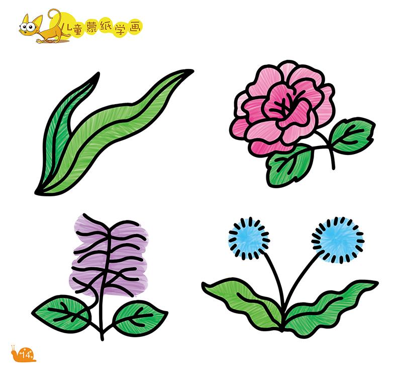 爱德少儿 儿童蒙纸学画植物