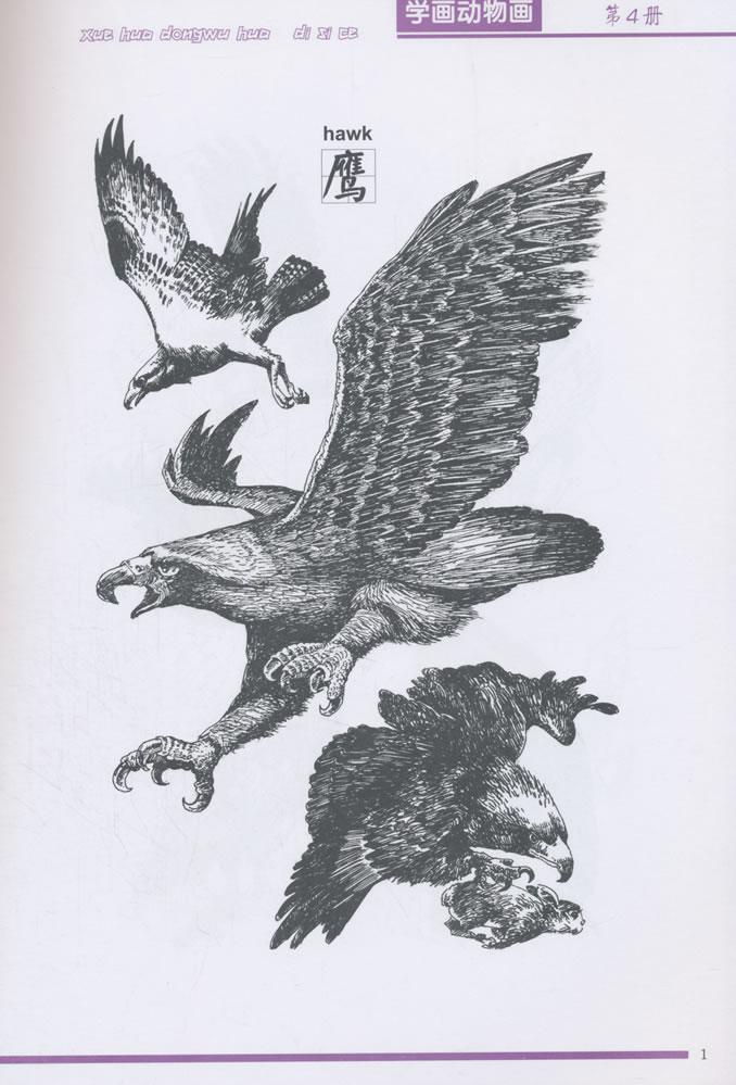 学画动物画·第4册/罗枫