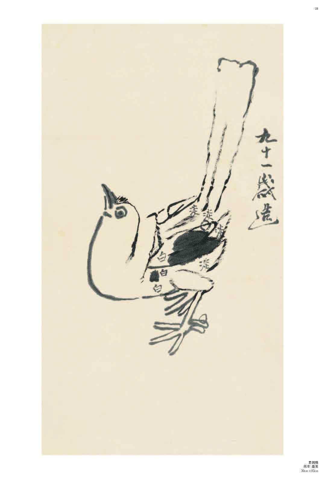 经典绘画临摹范本 齐白石 画稿篇 二