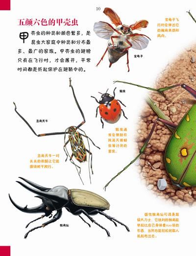 我的第一本百科全书:小型动物的奇妙世界