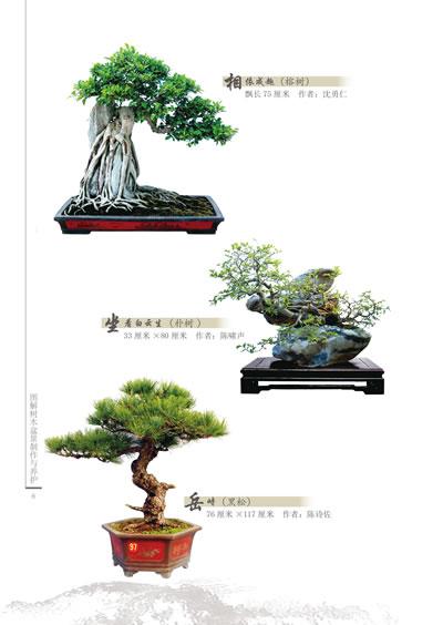 【rt4】图解树木盆景制作与养护