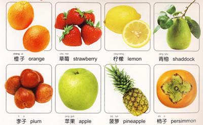 日常用品 常见蔬菜 常见水果 常见动物 幼儿园