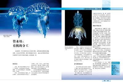 贝塔斯曼动物大百科:海洋动物