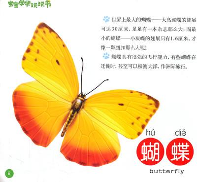 宝宝学学玩玩书可爱的动物/21081557