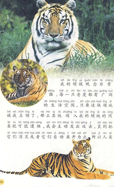 动物百科全书——中国儿童成长必读系列·小笨熊典藏