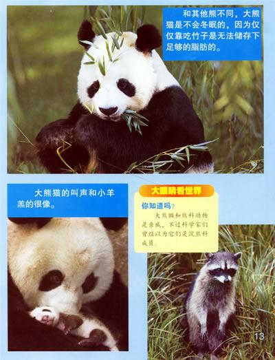濒危的动物(适合8-12岁)环境保护