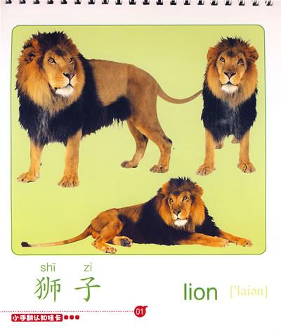小手翻认知挂卡:可爱的动物(光盘&书&翻绳)(含光盘)