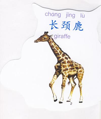 动物图片及拼音