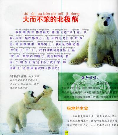 野生动物园——小博士动物百科(注音版)