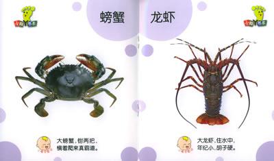 小脚丫书系·宝宝认:可爱动物