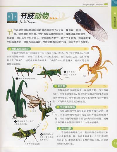【正版畅销书籍儿童读物经典故事彩书坊-动物世界大