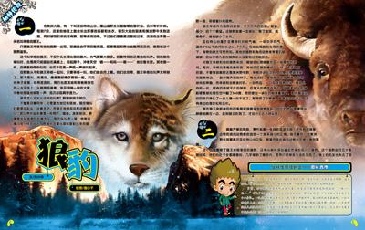 《动物奇迹(第三季度)共3册》李茗茗