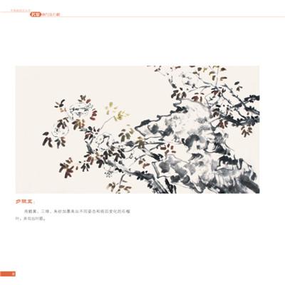 中国画技法丛书 名家画写意石榴